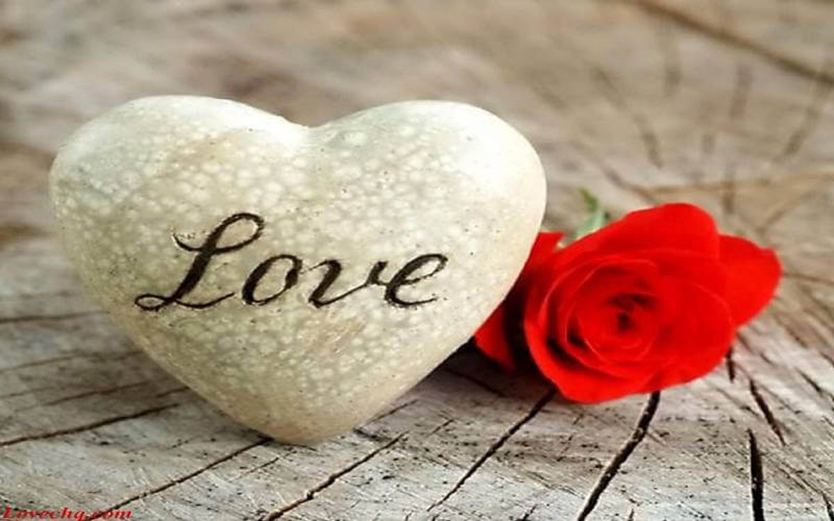 Love Quotes Love Love Quotes For Your Loved One Or For A Special Occasion.